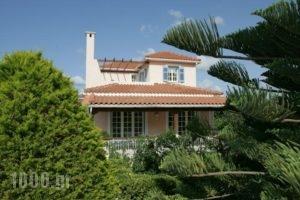 Villa Tzivras_holidays_in_Villa_Ionian Islands_Kefalonia_Argostoli