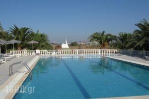 Mariliza Beach Hotel_accommodation_in_Hotel_Dodekanessos Islands_Kos_Kos Rest Areas