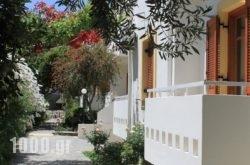 Michael Apartments in Rethymnon City, Rethymnon, Crete
