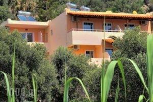 Anemoni Studios_accommodation_in_Hotel_Crete_Rethymnon_Plakias