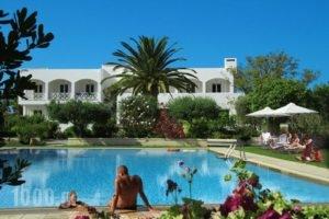 Mantenia Hotel_accommodation_in_Hotel_Crete_Rethymnon_Rethymnon City