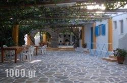 Miltiadis Apartments in Paros Rest Areas, Paros, Cyclades Islands