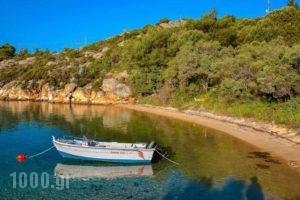 Thalassokipos_best prices_in_Hotel_Macedonia_Halkidiki_Chalkidiki Area
