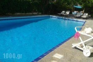 Villa Dolphins_travel_packages_in_Piraeus Islands - Trizonia_Poros_Poros Chora