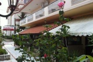Sante_accommodation_in_Hotel_Macedonia_Halkidiki_Kassandreia