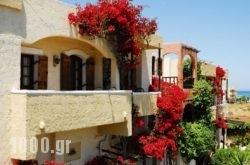 Malia Studios Hotel-Apartments in Malia, Heraklion, Crete
