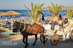 Manolis Family_best deals_Hotel_Crete_Chania_Georgioupoli