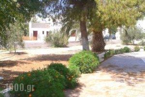 Chrisanthi Studios_holidays_in_Hotel_Cyclades Islands_Naxos_Agios Prokopios