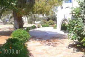 Chrisanthi Studios_lowest prices_in_Hotel_Cyclades Islands_Naxos_Agios Prokopios