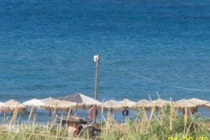 Nikolas Apartments_best deals_Apartment_Crete_Chania_Stalos