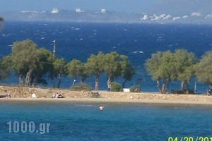 Nikolas Apartments_best prices_in_Apartment_Crete_Chania_Stalos