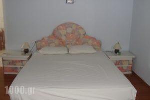 Villa Lefkas_lowest prices_in_Villa_Ionian Islands_Lefkada_Lefkada's t Areas