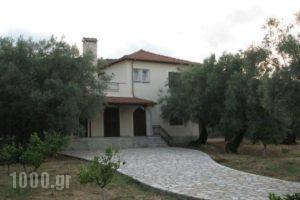 Villa Lefkas_accommodation_in_Villa_Ionian Islands_Lefkada_Lefkada's t Areas