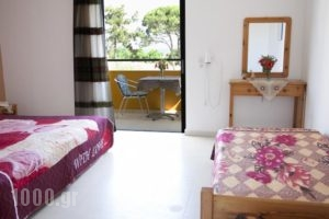 Manolis Studios_lowest prices_in_Hotel_Dodekanessos Islands_Kos_Kos Rest Areas