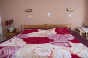 Manolis Studios_best prices_in_Hotel_Dodekanessos Islands_Kos_Kos Rest Areas
