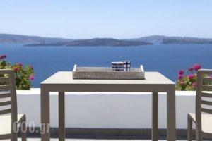 Santorini Secret Suites & Spa_lowest prices_in_Hotel_Cyclades Islands_Sandorini_Oia