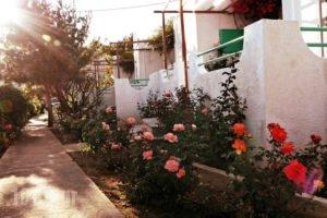 Studios Crete_holidays_in_Hotel_Crete_Lasithi_Ierapetra