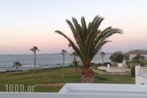 Astir Of Paros_best prices_in_Hotel_Cyclades Islands_Paros_Paros Rest Areas