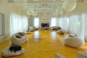 Doryssa Seaside Resort_best prices_in_Hotel_Aegean Islands_Samos_Pythagorio