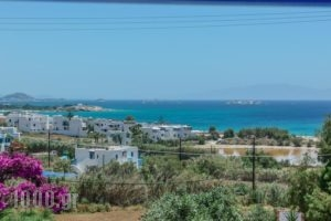 Studios Tasia_travel_packages_in_Cyclades Islands_Naxos_Naxos chora