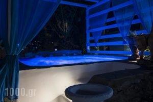 Amaryllis Apartments & Studios_lowest prices_in_Apartment_Cyclades Islands_Mykonos_Mykonos ora