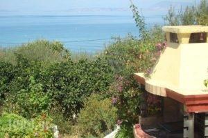 Villa Pelagia_holidays_in_Villa_Ionian Islands_Corfu_Corfu Rest Areas