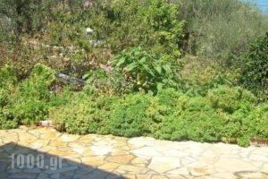 Villa Pelagia_best deals_Villa_Ionian Islands_Corfu_Corfu Rest Areas