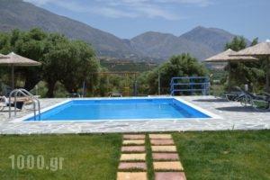 Ikaros Studios_best deals_Hotel_Crete_Rethymnon_Plakias