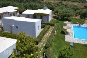 Ikaros Studios_travel_packages_in_Crete_Rethymnon_Plakias