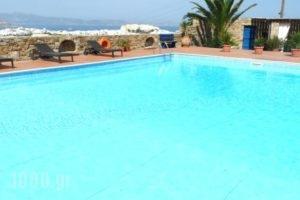 Paradisia Villas_holidays_in_Villa_Cyclades Islands_Naxos_Naxos chora