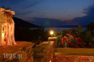 Milia Apartments_holidays_in_Apartment_Sporades Islands_Skopelos_Skopelos Chora