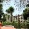 Oasis Apartments_best deals_Apartment_Peloponesse_Argolida_Tolo