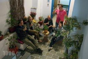 Studios Panos_best prices_in_Hotel_Cyclades Islands_Naxos_Naxos chora