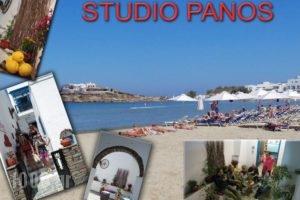 Studios Panos_holidays_in_Hotel_Cyclades Islands_Naxos_Naxos chora