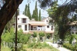 Georgina Apartments in Corfu Rest Areas, Corfu, Ionian Islands