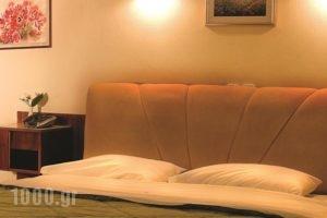 Egnatia_holidays_in_Hotel_Epirus_Ioannina_Ioannina City