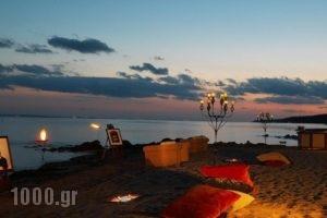 Danai Beach Resort & Villas_best prices_in_Villa_Macedonia_Halkidiki_Kassandreia