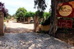 Aenaon Studios_accommodation_in_Hotel_Central Greece_Evia_Edipsos