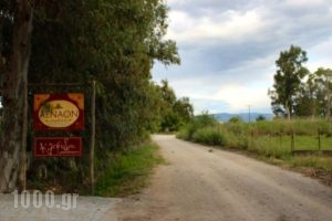 Aenaon Studios_travel_packages_in_Central Greece_Evia_Edipsos