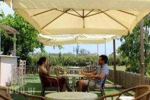 Aenaon Studios_holidays_in_Hotel_Central Greece_Evia_Edipsos