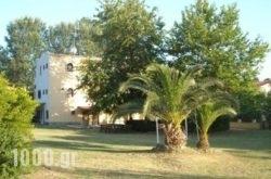 Paradise Studios in Chalkidiki Area, Halkidiki, Macedonia