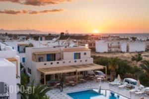 Venus Mare_holidays_in_Hotel_Crete_Heraklion_Episkopi