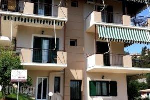 Nikoleta Studios_accommodation_in_Hotel_Ionian Islands_Lefkada_Lefkada Chora