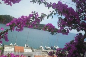 Babis_holidays_in_Hotel_Sporades Islands_Skiathos_Skiathoshora