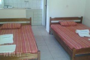 Villa Mandani_best prices_in_Villa_Macedonia_Pieria_Paralia Skotinas