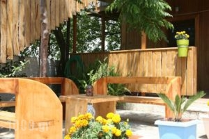Pension Maria_best prices_in_Hotel_Ionian Islands_Lefkada_Vasiliki
