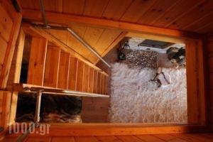 Vasiliki Mountain Farm & Retreat_lowest prices_in_Hotel_Central Greece_Fthiotida_Pavliani