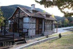 Vasiliki Mountain Farm & Retreat_holidays_in_Hotel_Central Greece_Fthiotida_Pavliani