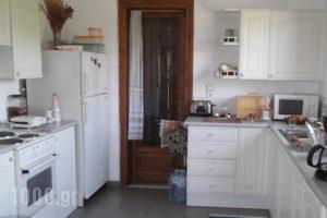 Villa Christina Apartments_holidays_in_Villa_Thessaly_Magnesia_Almiros