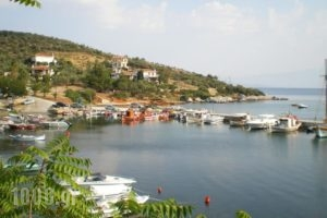 Villa Christina Apartments_best deals_Villa_Thessaly_Magnesia_Almiros
